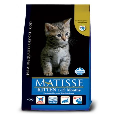 מאטיס מזון לגורי חתולים