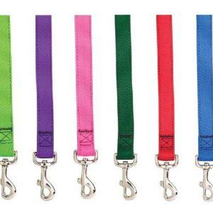 רצועות לכלבים צבעוניות