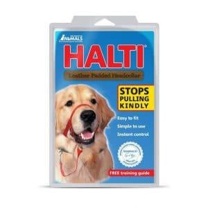 רצועות לכלבים האלטי