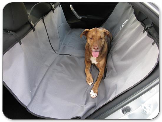 כיסוי מושב לרכב לכלבים