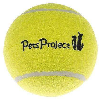 כדור טניס משחקים לכלבים